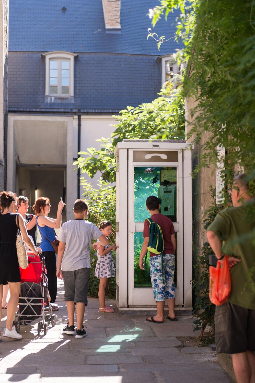 Dans le cadre du voyage à Nantes, cette cabine téléphonique aquarium de poissons exotiques a été placée au Passage Sainte Croix.